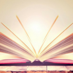 Glossary of terms used in Employee Performance Management process